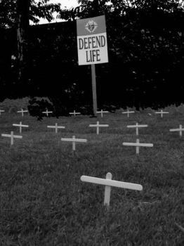 Defend Life by vengnightly