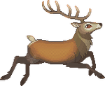 RedDeer by CrookedAntlers