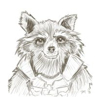 Rocket Raccoon by Debra-Marie