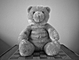 Teddy HDR by TheBirdsFeathers