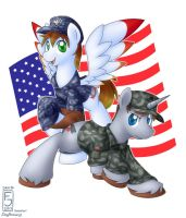 Commission: Military Ponies by SkyHeavens