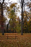 Lonely Bench 1 by midnightstouchSTOCK
