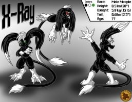 Character Layout - X-Ray by Lysozyme