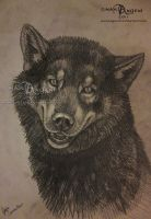 Wolf-Dog sketch by makangeni