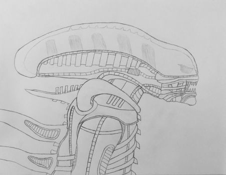 ALIEN - Xenomorph Sketch (Profile) by Varia31