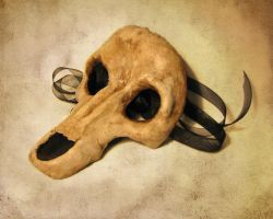 Wolf Skull Masquerade Mask by Dr-K