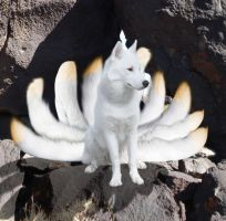 Real Ninetails by MistyBlue2010