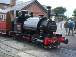 Talyllyn Stands At Wharf by rh281285