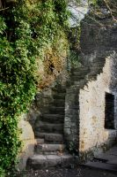 Old Ruin Steps by JulieLangford