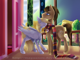 My Little Pony Doctor Who and Derpy by MayaSnou