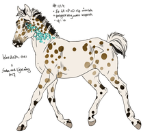 1114 Foal Design for WildOracle by KimboKah