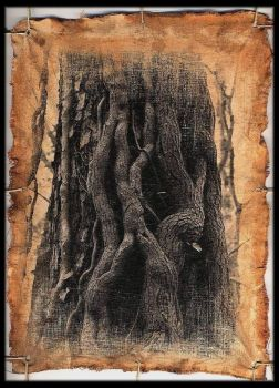 tree of knowledge by fotokultur