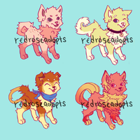 Dog Adopts 3 [ 2/4 open] by redroseadopts