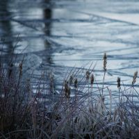 Beginning of an ice-age by fotojenny