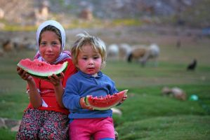 watermelon by tamergunal