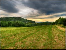Field near Zezice by Pildik