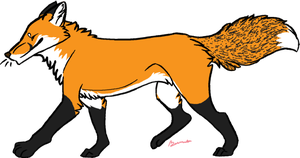 Red fox doodle by Beenabutter