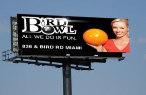 Bird Bowl Billboard by Whatsome