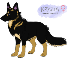 Kryzia reference by americaneagIe