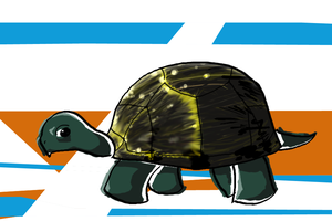 Turtle by iceiwynd