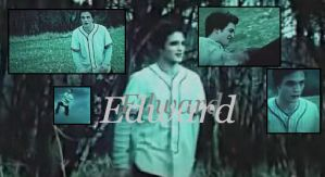 Edward Cullen by Amylwa