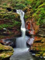 Ricketts Glen State Park 96 by Dracoart-Stock