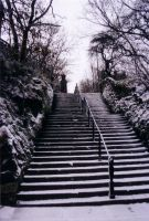more snowy steps by tunny