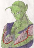 Piccolo by IDimopoulos