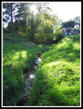 Beautiful Stream by Green by pikab2001