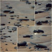 water running through the pebbles by ARAart