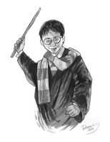 Harry Potter by brentb9702