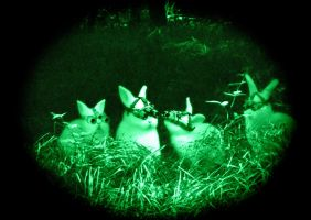 nightview bunnies by MarieSaalfrank