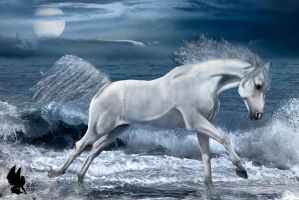 Cheval d'eau by Xiao-Ninie