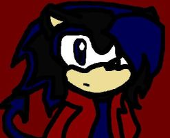 Havoc the hedgehog Request by SonnyTHandco
