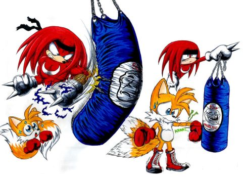 Tails learning to box by Dash-The-Cheetah