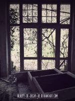Mansion L. VI by Beauty-of-Decay-de