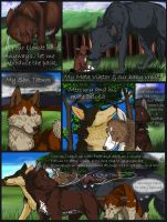 PoF: page 8 by SolinaBright