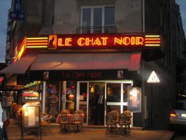 Le Chat Noir by that-cat