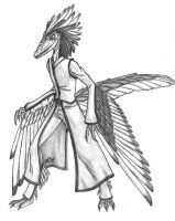 Anthrosaurs-Male Archaeopteryx by Predaguy
