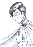 Robin - Pencil by Meneguitte