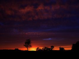 Red Sky At Night by ToeTag