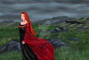 Red and black dress by Alakram