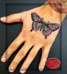 traditional sailor jerry butterfly on the hand tat by loop1974