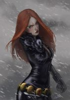 The Black Widow by rosythorns