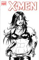 Sexy X23 Sketchcover by ElfSong-Mat