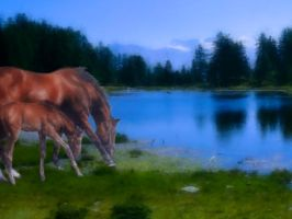 horses lead to water by Contorted-Lyridamson