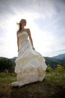 Bridal Landscape by aliciamac