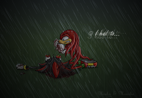 Knuckles and Shadow by Moehn