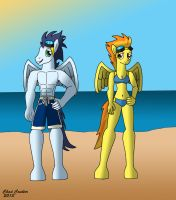 MLP FiM Swimwear Soarin and Spitfire by BaroqueWolfe
