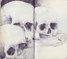 Skull Trio by SketchbookNoir